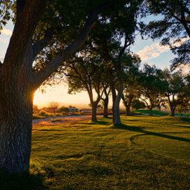 blue-marble-landscape-best-commercial-landscaping-arizona